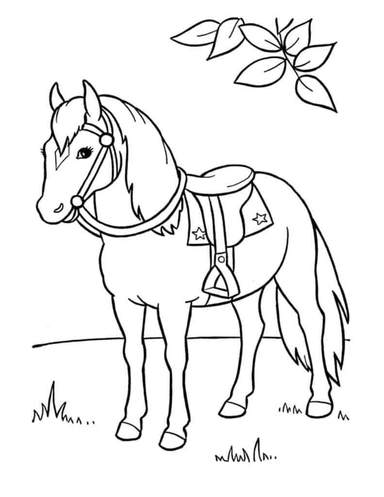 Kleuren paarden tekening