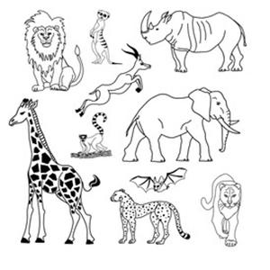 dieren kleurplaat