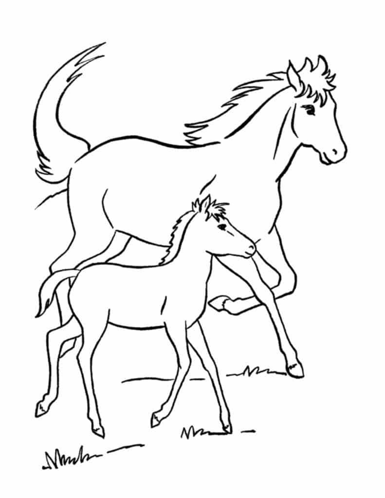 gratis kleurplaten paarden