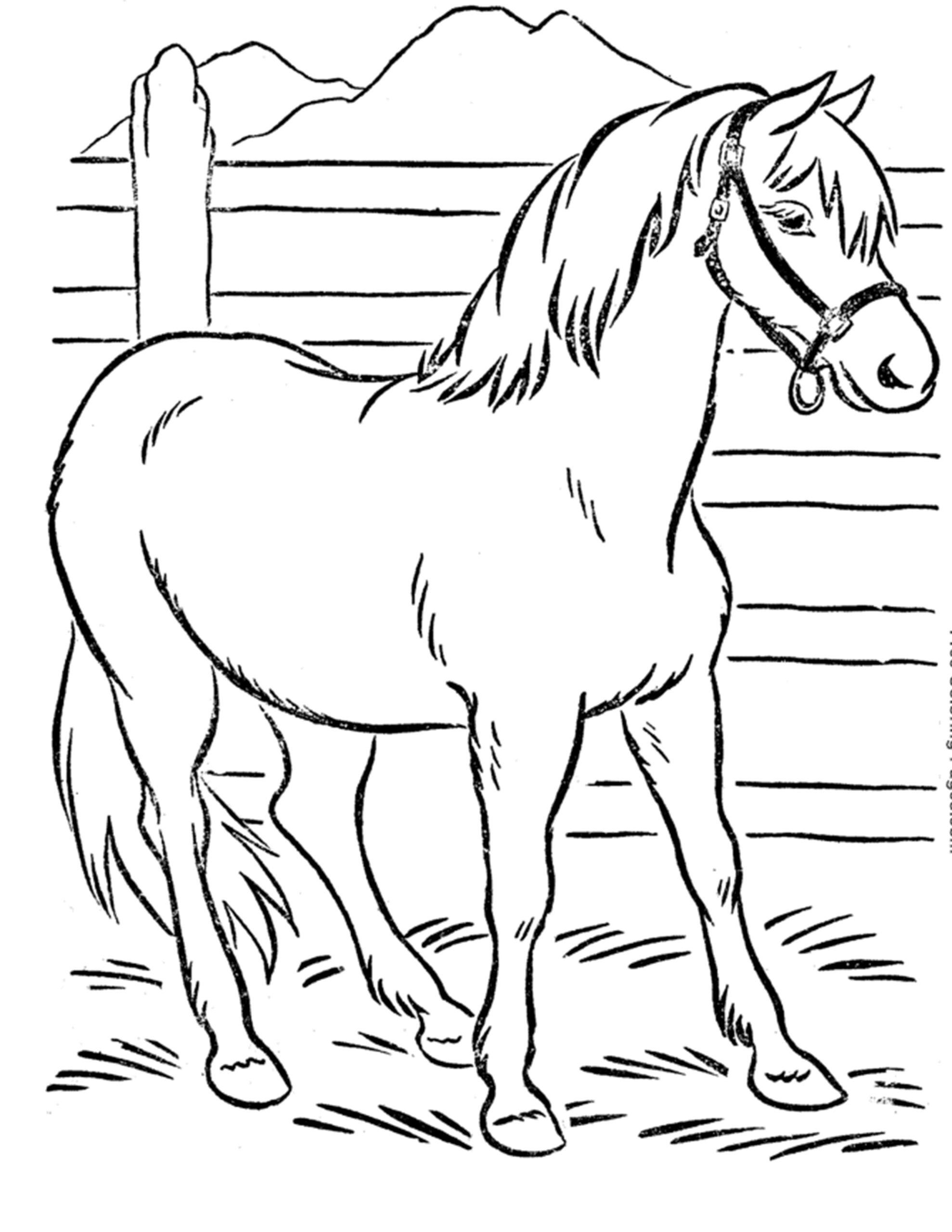 gratis paard inkleuren tekening