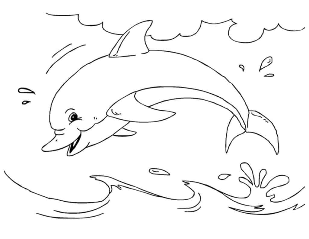 grote kleurplaat dolfijnen