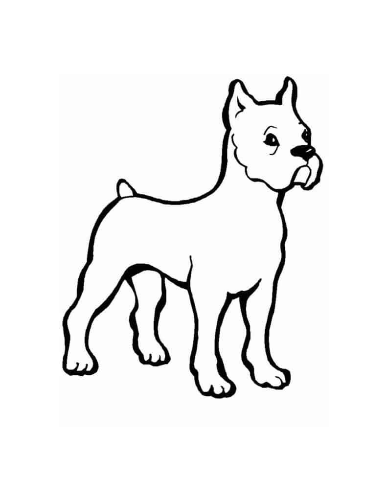hond inkleuren kinderen