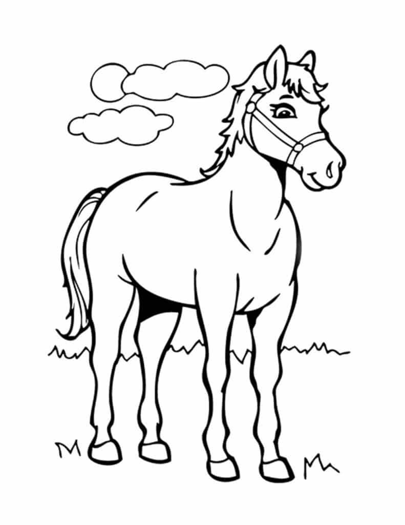 kleurplaat paarden kinderen tekenen