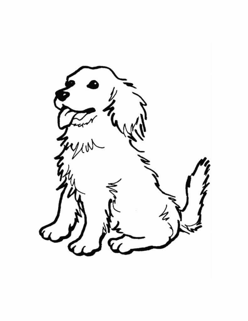 kleurplaat voor kinderen honden