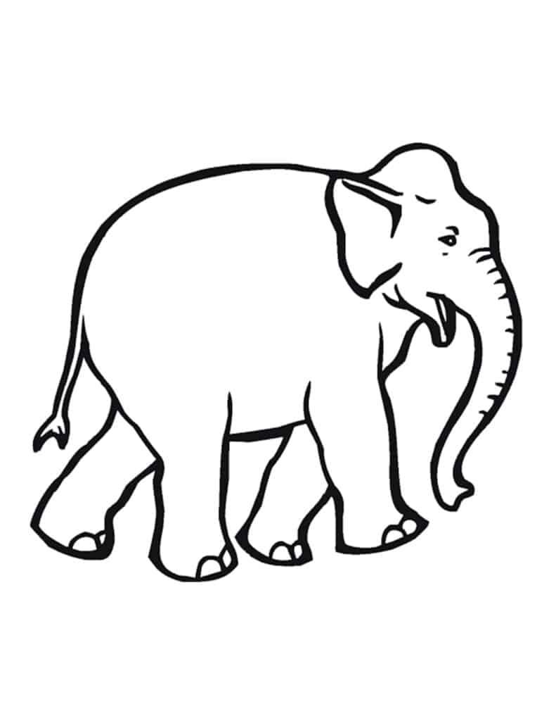 makkelijke kleurplaat olifant