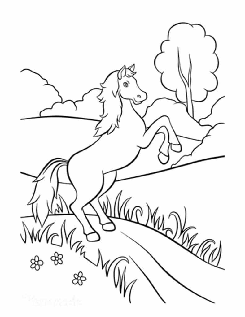 paard inkleuren kleurplaat