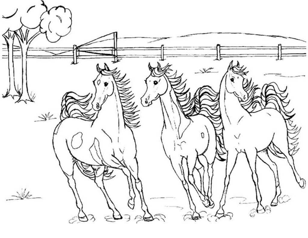 paarden inkleuren kinderen