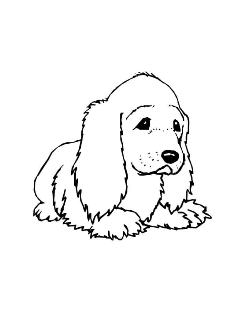 tekening kleuren kinderen honden