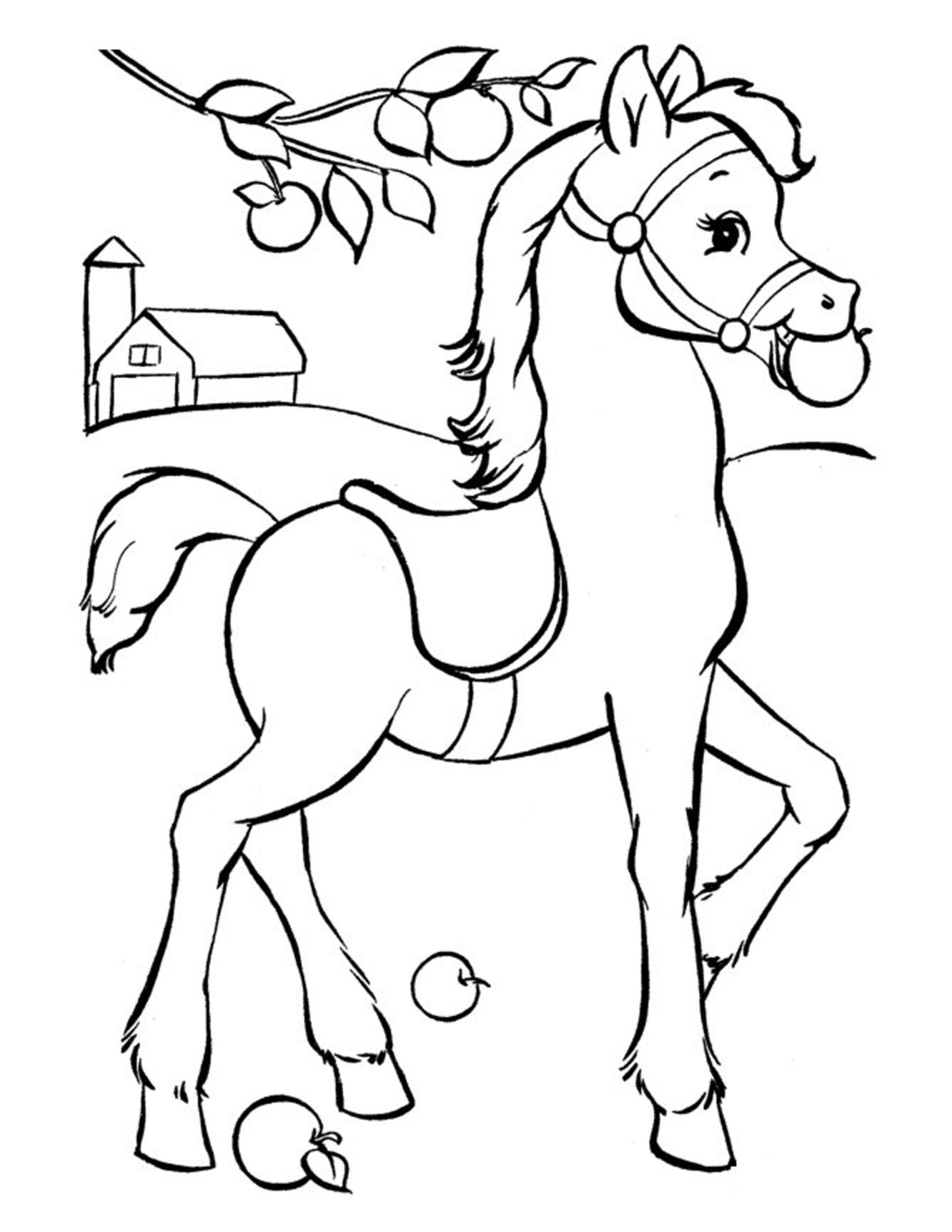 tekening paarden inkleuren